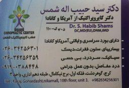 دکتر سید حبیب اله شمس